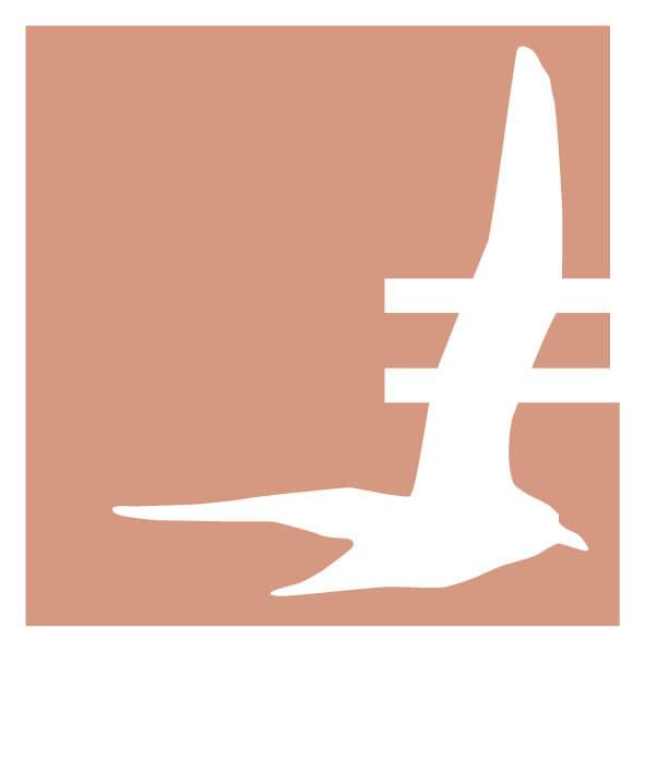 EFR_E_Logo_orange